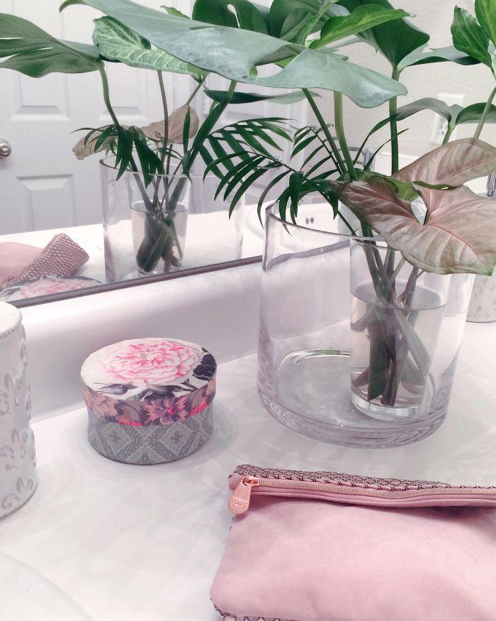 bathroomplants
